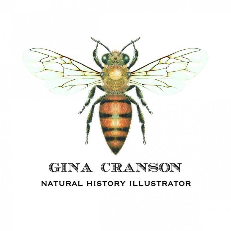 Gina Cranson