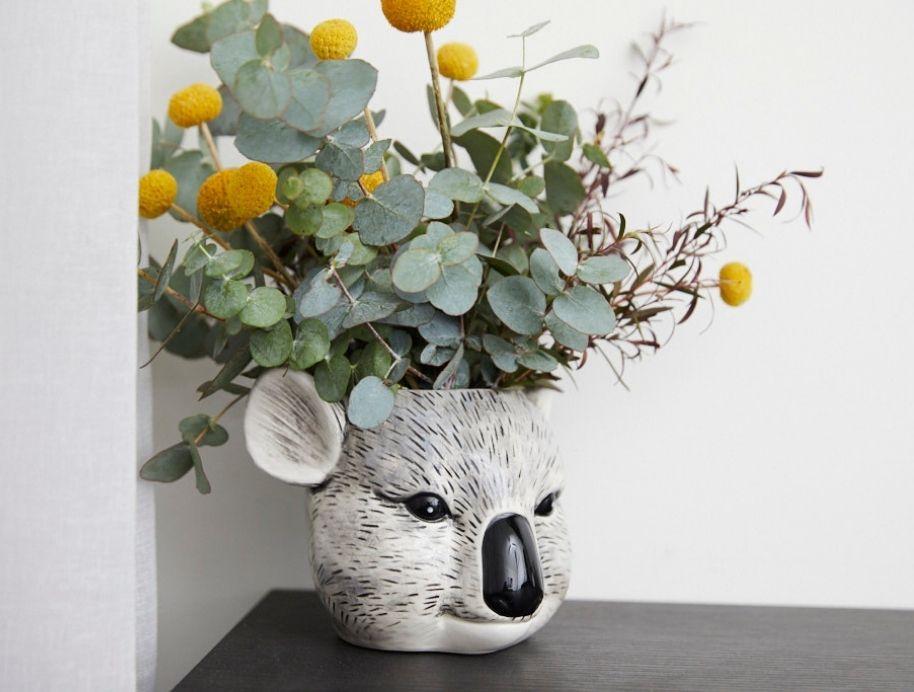 Koala planter