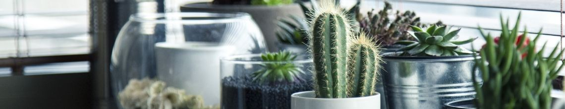 Garland, Contemporary / Modern Artificial Plants & Flowers Outdoor
