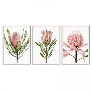 3 Print Floral Collection | Sara Turner