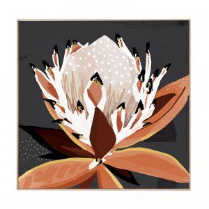 Comino Protea | Framed Canvas Print