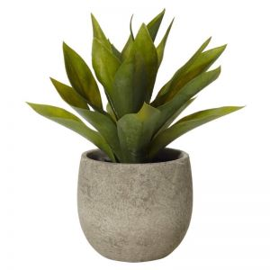 African Agave Faux Plant