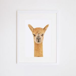 Alice the Alpaca | Giclee Print | by For Me By Dee