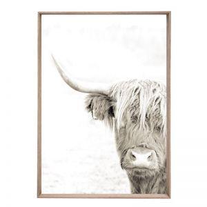 Alister   Framed Art Print