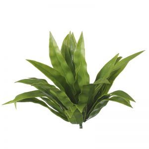 Aloe Vera Stem | UV Resistant | 20cm