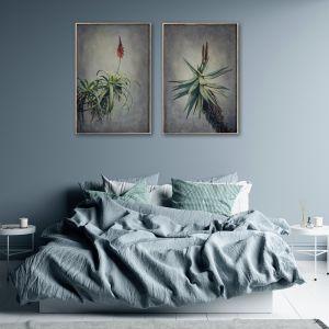 Aloes | Set of 2 Art Prints | Unframed