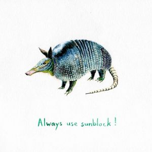 Always Wear Sunblock Armadillo | Unframed Print