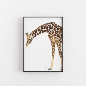 Amber the Giraffe Wall Art Print by Pick a Pear   Unframed