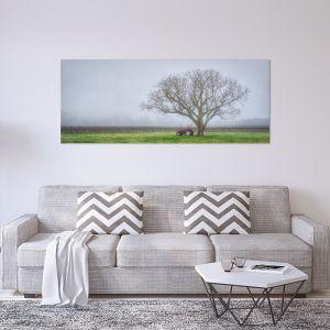 Amongst The Vines | Canvas Print by Scott Leggo