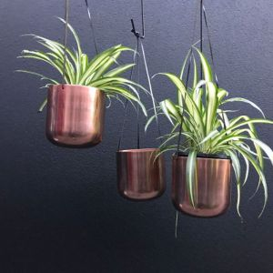 Antique gold/brass colored pot plant holders x 3