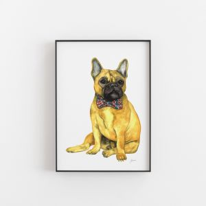 Anton The French Bulldog Animal Art Print by Pick a Pear | Unframed