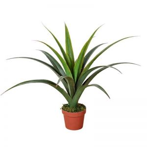 Artificial Dracaena Plant   80cm