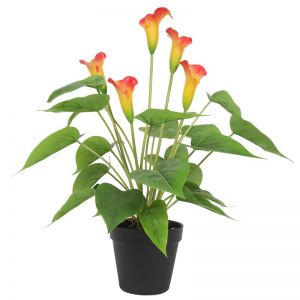 Artificial Flowering Orange Peace Lily/Calla Lily | 50cm