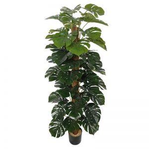 Artificial Money Plant Monstera with Decorative Pot | 180cm