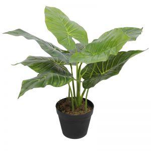 Artificial Potted Taro Plant | Elephant Ear 55cm