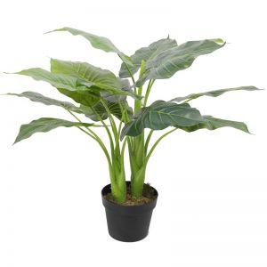 Artificial Potted Taro Plant | Elephant Ear 70cm
