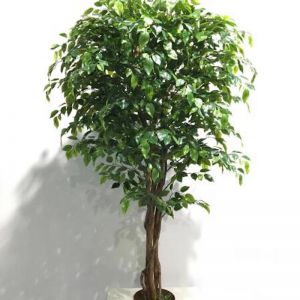 Artificial Rounded Ficus Tree | 170cm