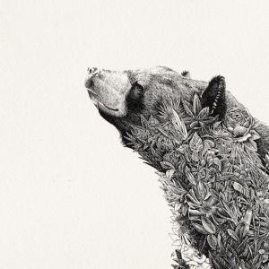 Asiatic Black Bear | Limited Edition Giclée Print