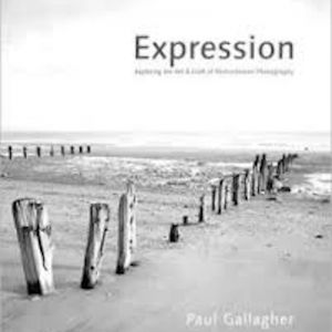 Aspects of Expression