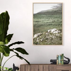 Australian Coastline Framed Canvas Print