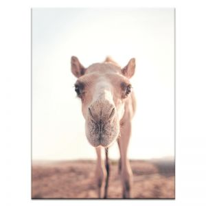 Baby Humps | Canvas or Print by Artist Lane