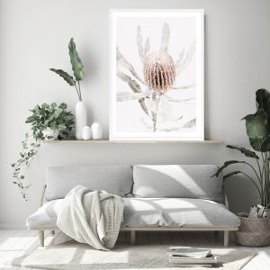 Banksia I Photo Art Print (Various Sizes)