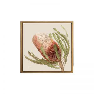 Banksia Native Living Art Flower 1 | Canvas Wall Art | Ivory