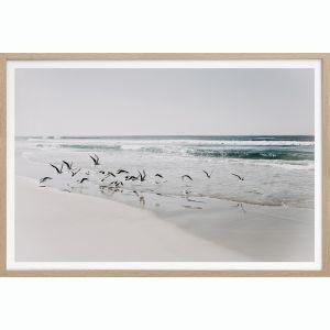 Beach Birds 2 | Art Print | Portrait or Landscape