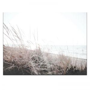 Beach Grass | Canvas or Print by Artist Lane