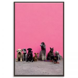 Best Friends | Prints and Canvas by Photographers Lane