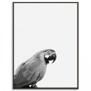 Bird | Canvas or Print by Artist Lane
