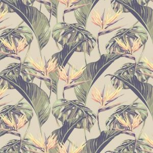 Birds of Paradise Wallpaper - Original