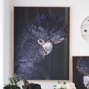 Black Betty No. 1 | Framed Photograph by Amelia Anderson