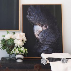 Black Betty No. 2 | Framed Photograph by Amelia Anderson