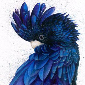 Black & Blue by Shani White | Ltd. Edition Print | Art Lovers Australia