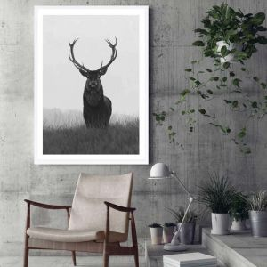 Black & White Elk Premium Art Print (Various Sizes)