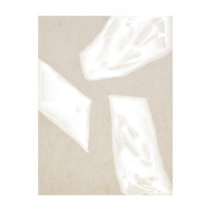 Blanc Spaces III | Canvas Print