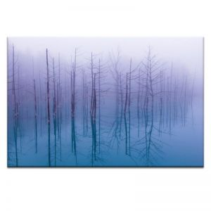 Blue Pond | Prints and Canvas by Photographers Lane
