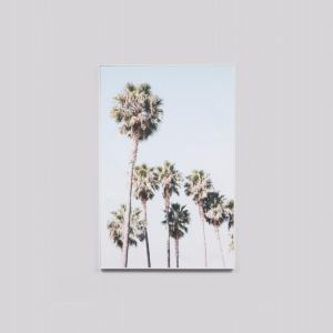 Blue Sky Palms | Framed Canvas Print