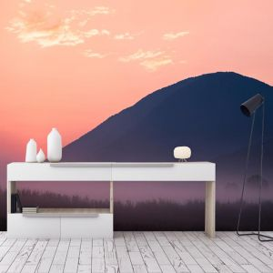 Blush Mountain | Full Wall Mural | Various Sizes