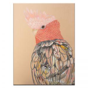 Blushing Galah | Amanda Skye-Mulder | Canvas or Print by Artist Lane