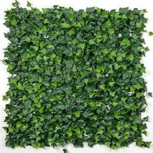 Boston Ivy Vertical Garden / Screen 1m by 1m Panel.