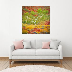 Branches Of Life | Canvas Print by Scott Leggo