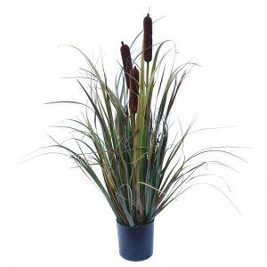 Brown Grass Plant 60cm