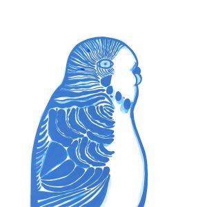 Budgerigar | Giclee Art Print | By Madeleine Stamer