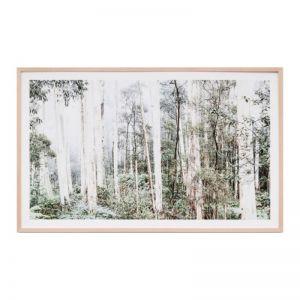 Bush Land Print