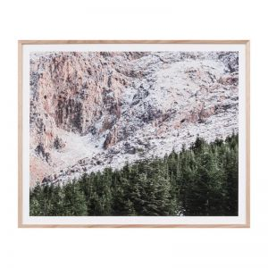 Bush Land Print   Framed