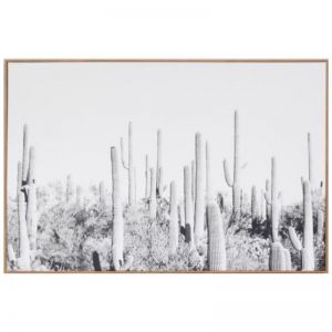 Cactus Landscape Photographic Framed Canvas Print | Schots