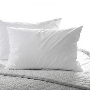Casa Decor 50/50 Duck Pillow | Twin Pack