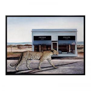 Catwalk   Canvas Print